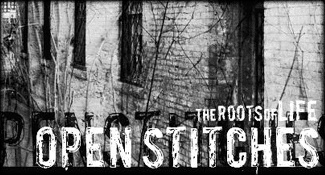 Open Stitches