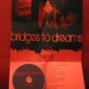 Bridges To Dreams : the fall